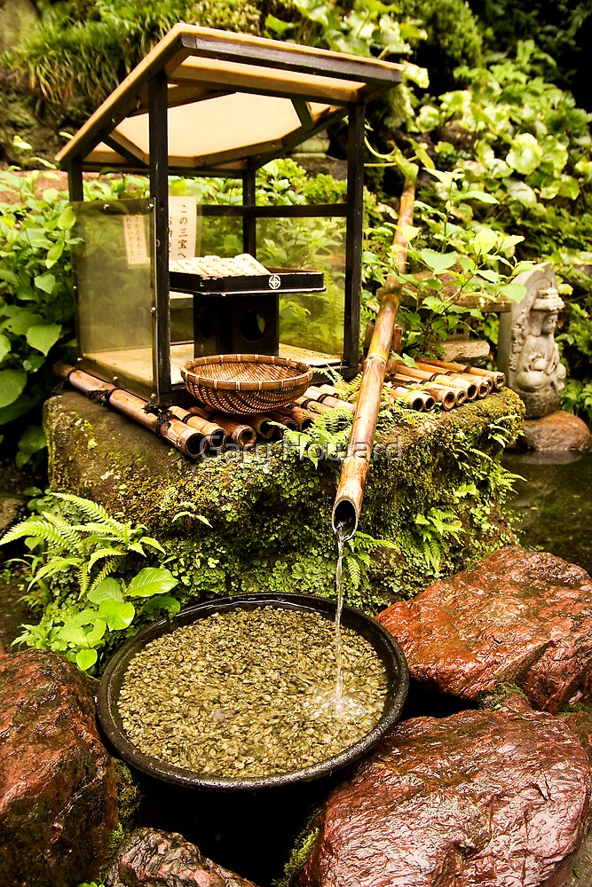 japanese garden by Gary Howard