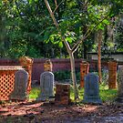 A Small Old Graveyard by TJ Baccari Photography