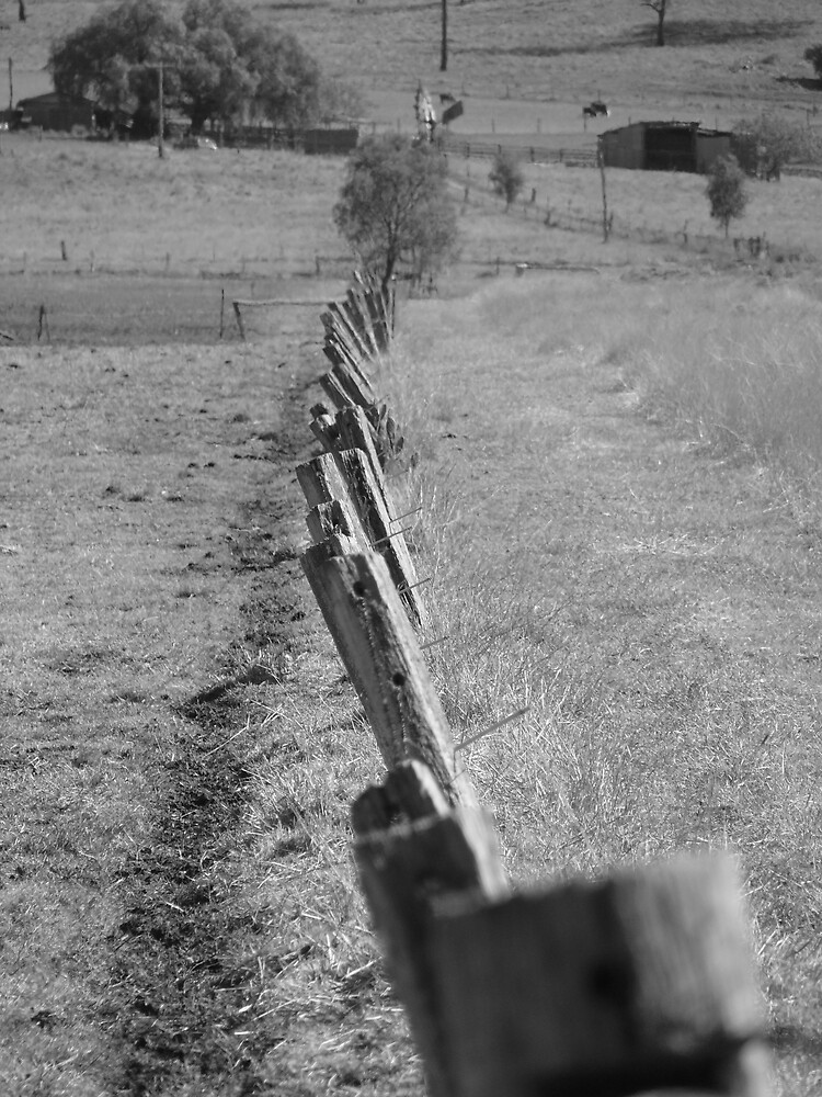 Down the line. by Tim Everding