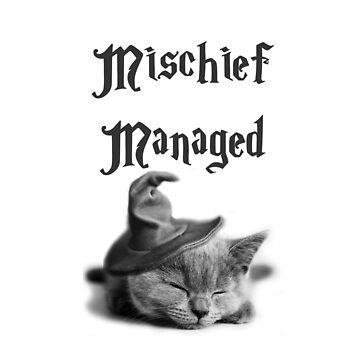 Kitten - Mischief Managed by OddFiction