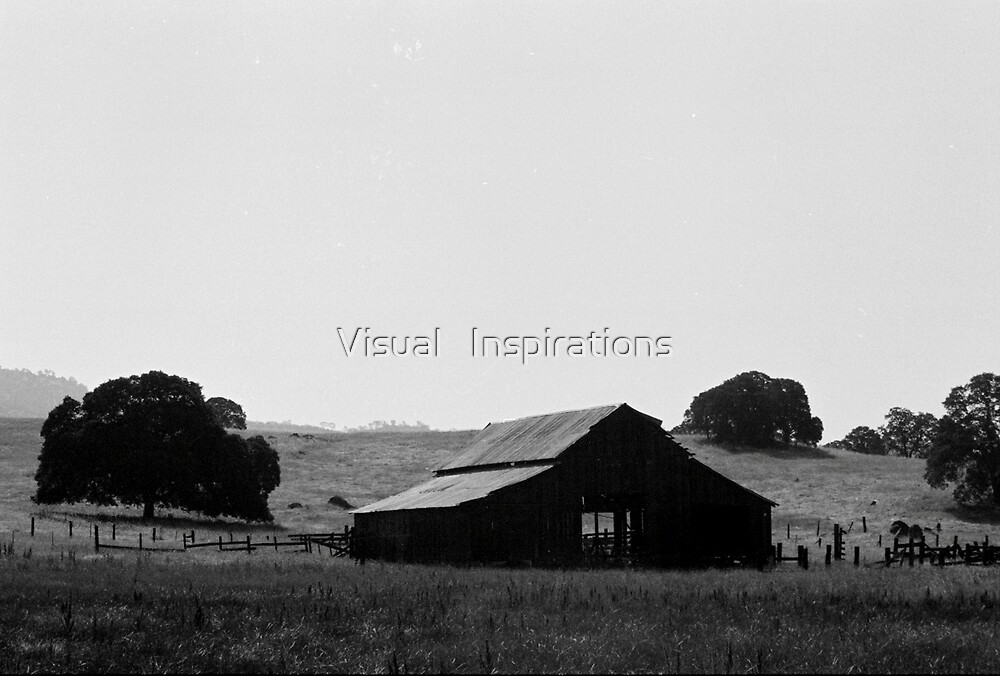 Contentment by Visual   Inspirations