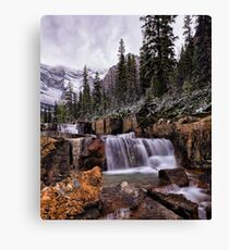 In the Footsteps of Giants Canvas Print