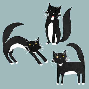 Black and White Cats by squirrell