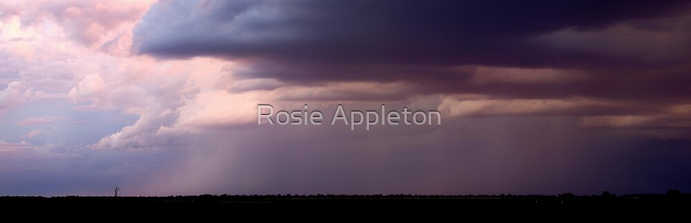 Storm at Perry Sandhills by Rosie Appleton