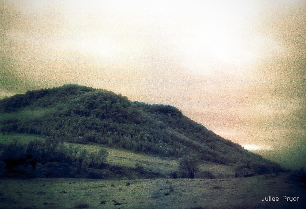 muted landscape #2 by Juilee  Pryor