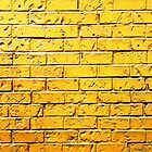 Beyond the Yellow Brick Wall  by Ethna Gillespie