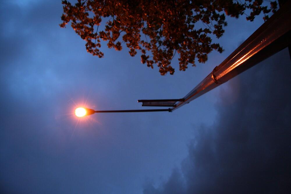A Street Light by Cora Wandel