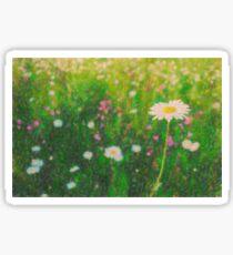 Flowers No. 8-9, Series 1 Sticker