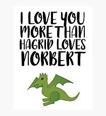 More Than Hagrid Love Norbert Photographic Print