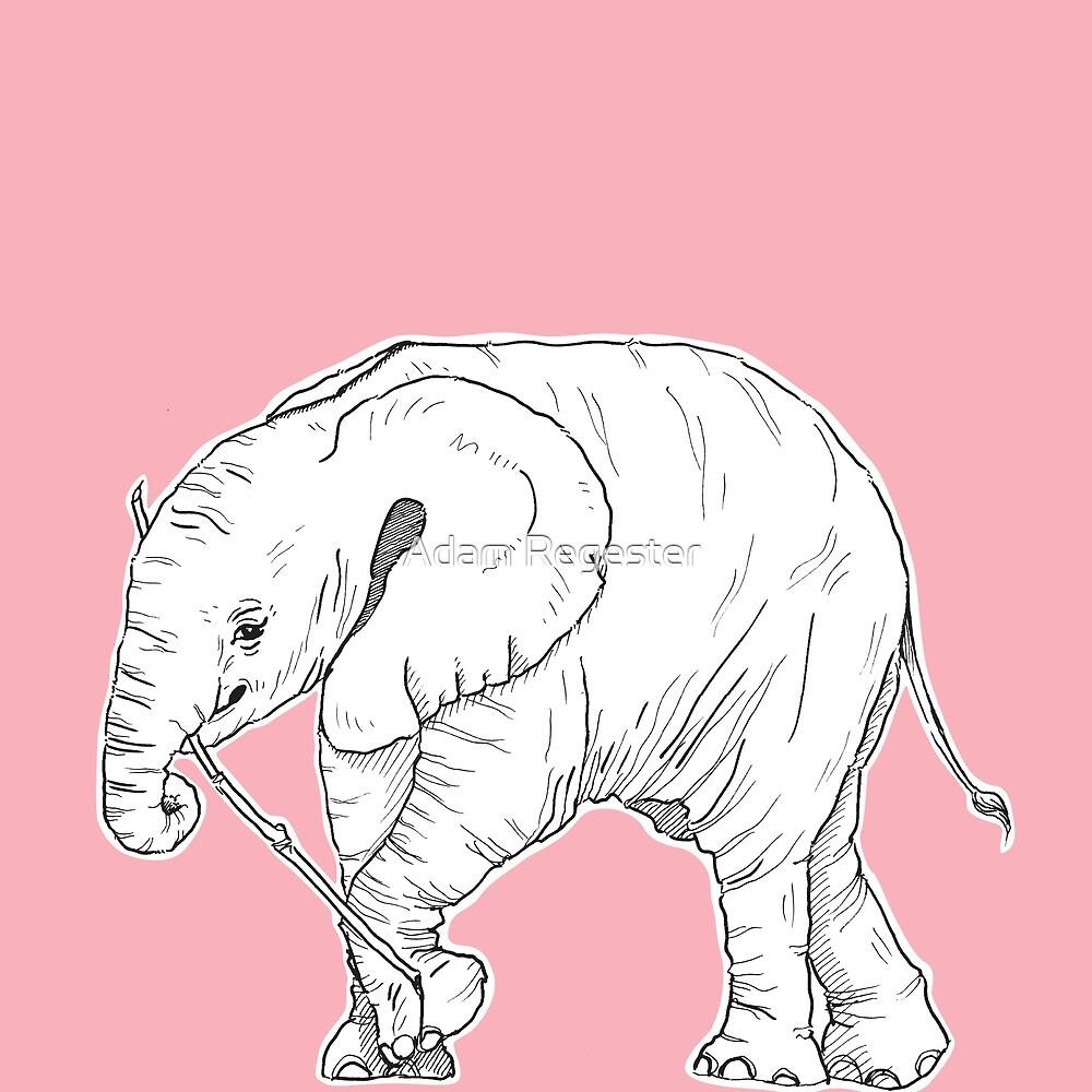 Baby Elephant by Adam Regester