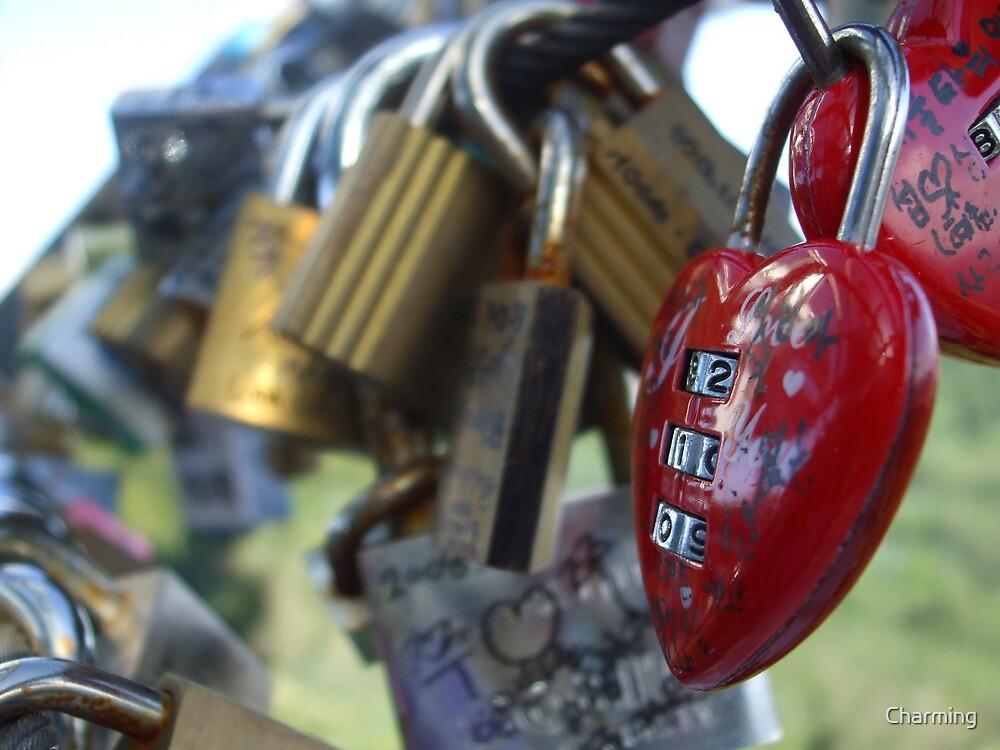 Locks 7 by Charming