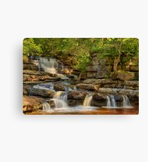 Lower East gill Force  Canvas Print