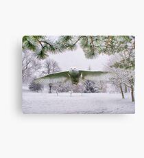 Snowy Owl In A Winter Wonderland Metal Print