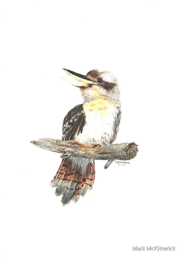 Kookaburra by Mark McKitterick