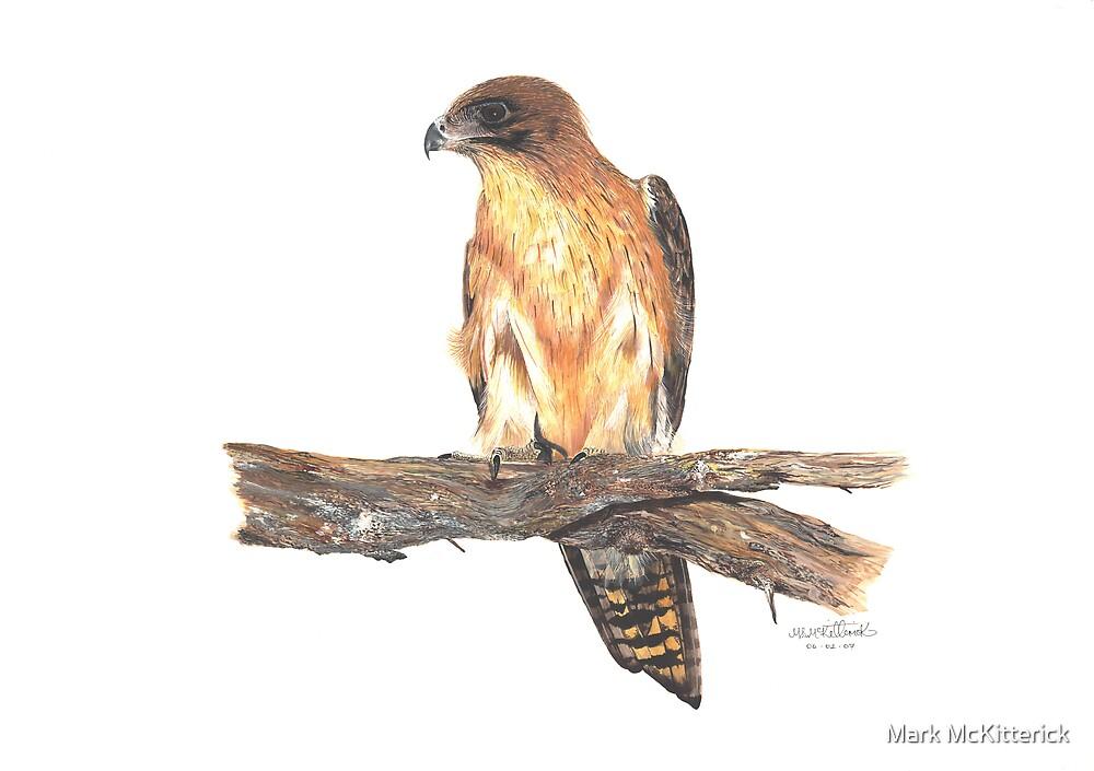 Eagle by Mark McKitterick