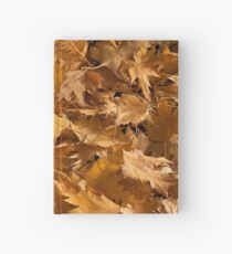 Golden Birch Leaves  Hardcover Journal