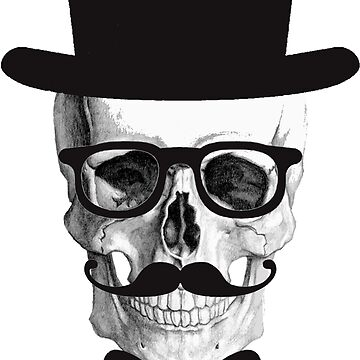 skull of hat by karenMachado