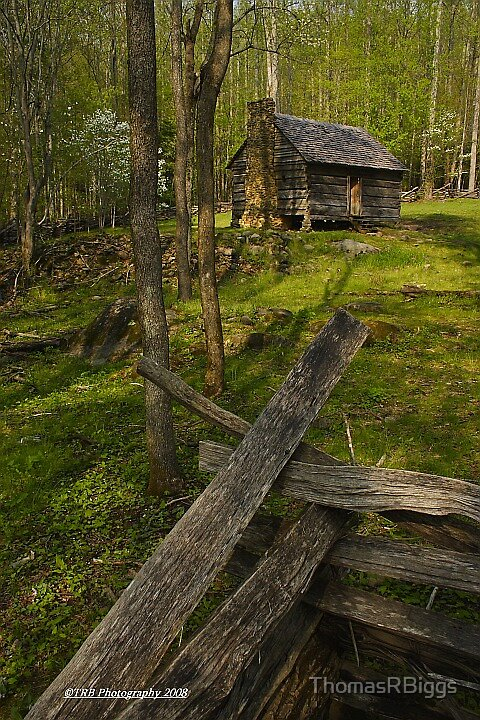 Spring Cabin, Roaring Fork by ThomasRBiggs