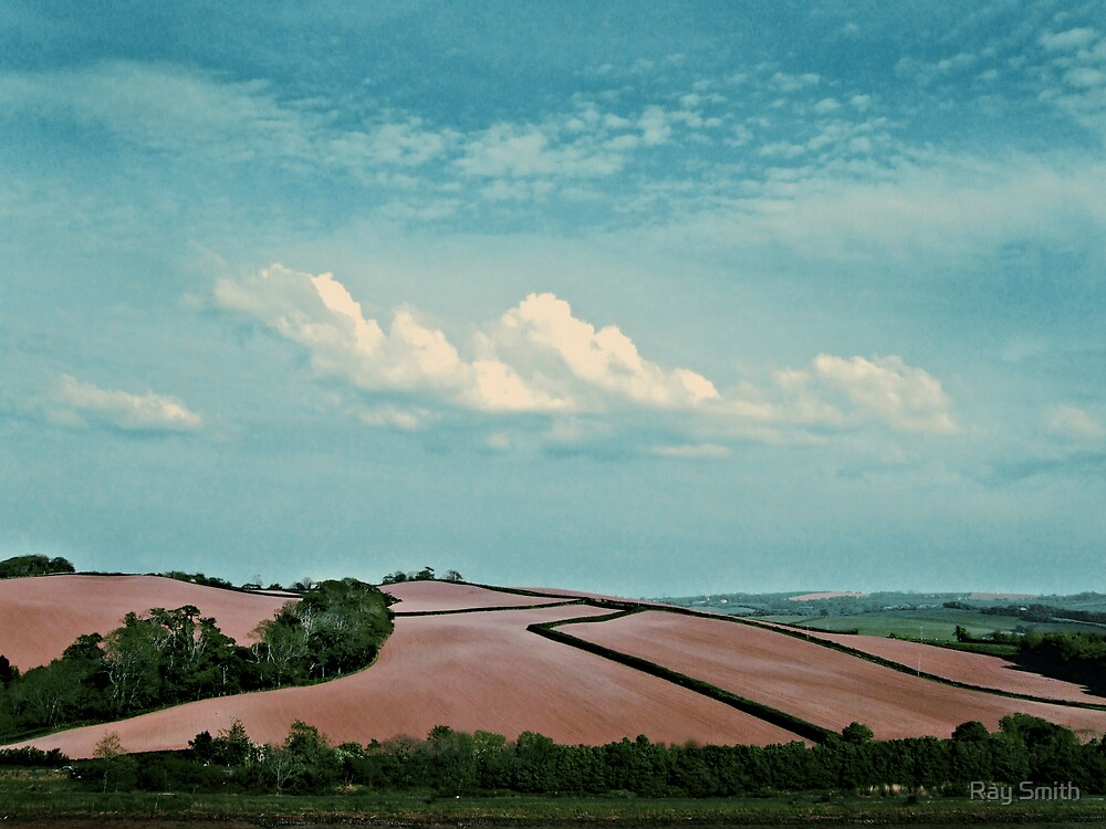 Ploughed field,  Bideford, Devon by Ray Smith