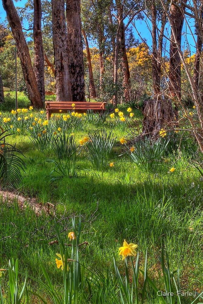 Springtime by Claire  Farley