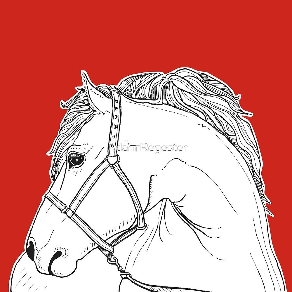 Horse Portrait by Adam Regester