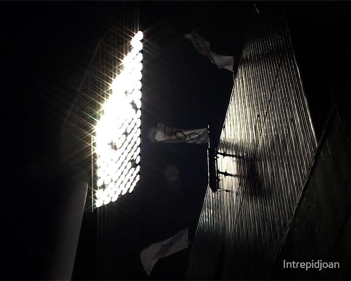 Light & flags by Intrepidjoan