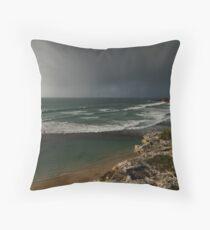 Stokes Bay Throw Pillow
