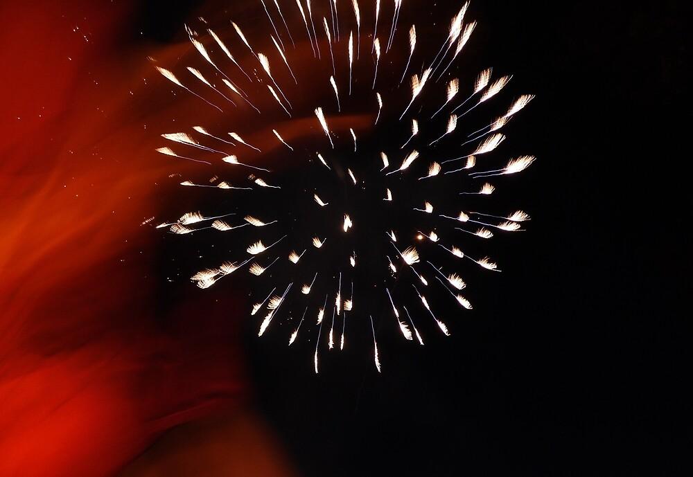 Fireworks by Karl Rose