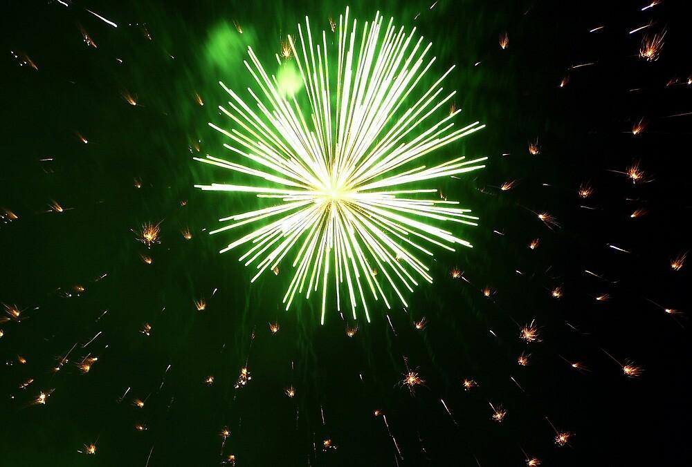 Fireworks 2 by Karl Rose