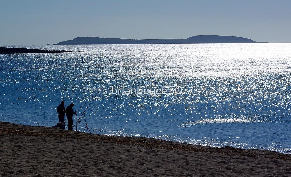 Great Saltee Island by brianboyce50