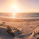 Aerial view of beach at sunset by homydesign
