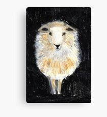 One Sheep.. Canvas Print
