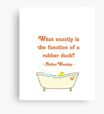 What exactly is the function of a rubber duck? Canvas Print