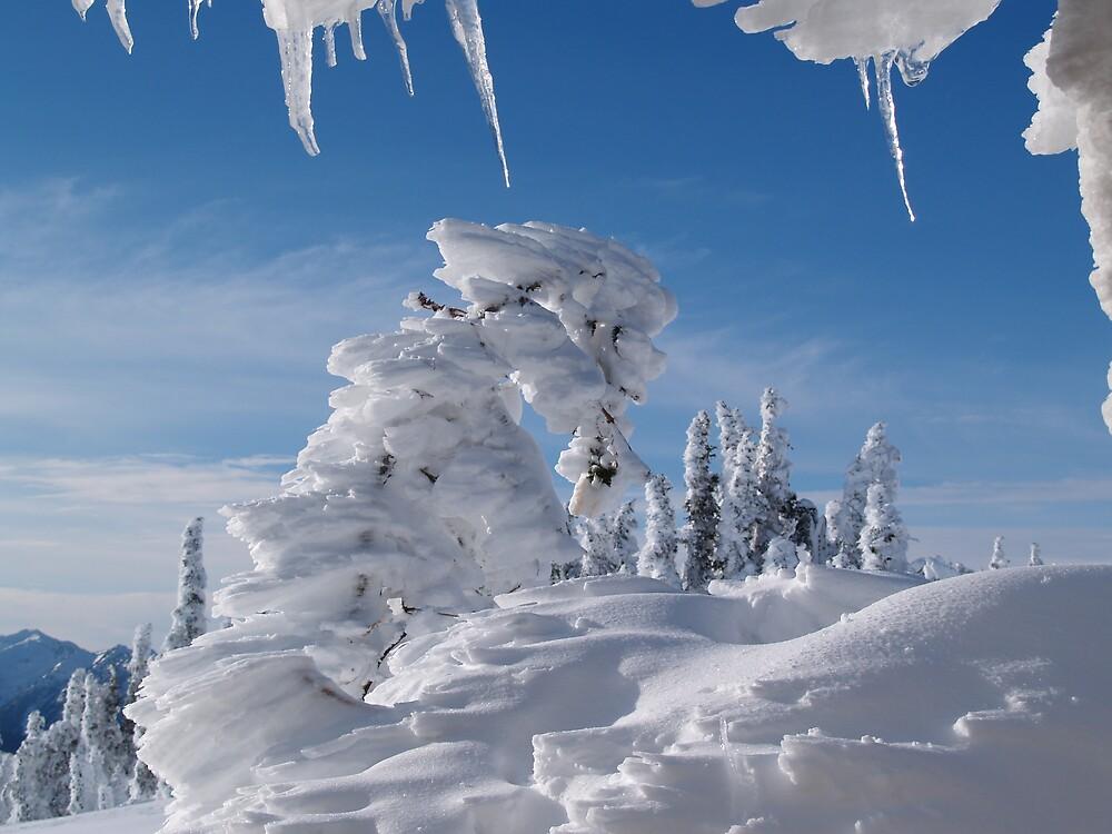 BEAUTIFUL SNOW SCULPTURES by MsLiz
