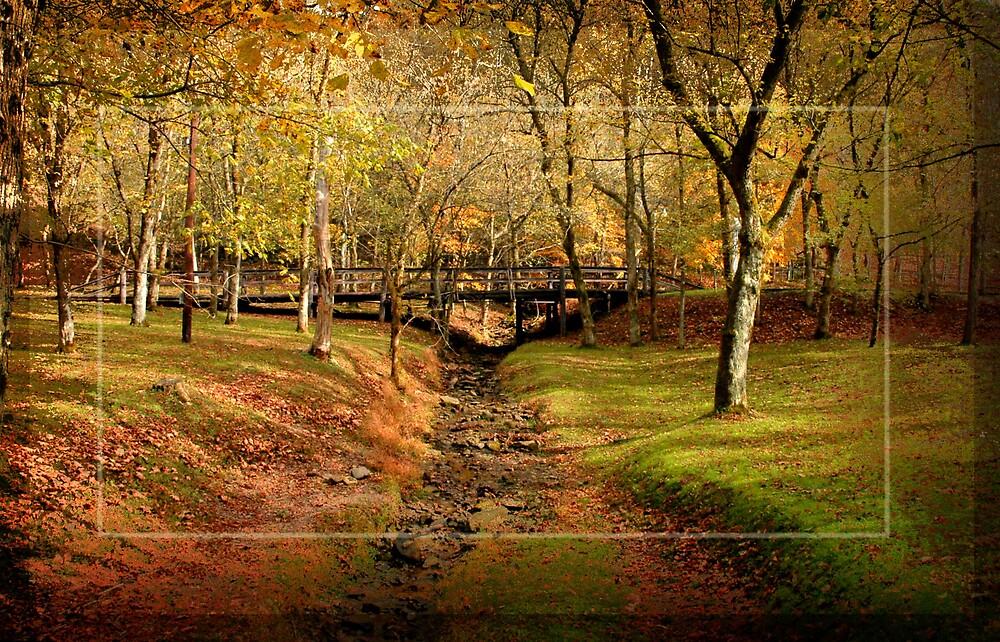Bridge at North Bend by Tim Lasure