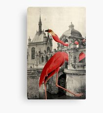 NUMBER 17 (FLAMINGO) Metal Print