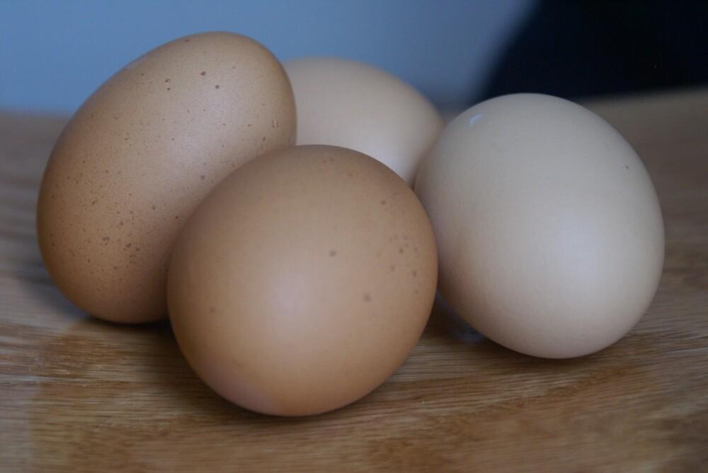 farm fresh brown eggs by KristiansKreati