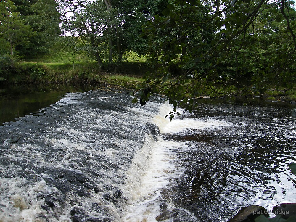 Weir on The Wyre by pat oubridge