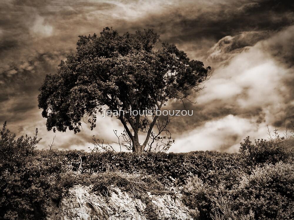 The tree... by jean-louis bouzou