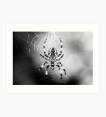 Arachnid II Art Print