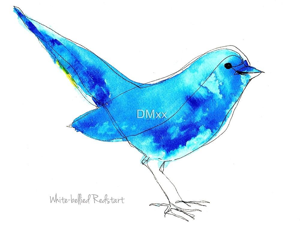 Birds in INK ~ White-bellied Redstart by DMxx