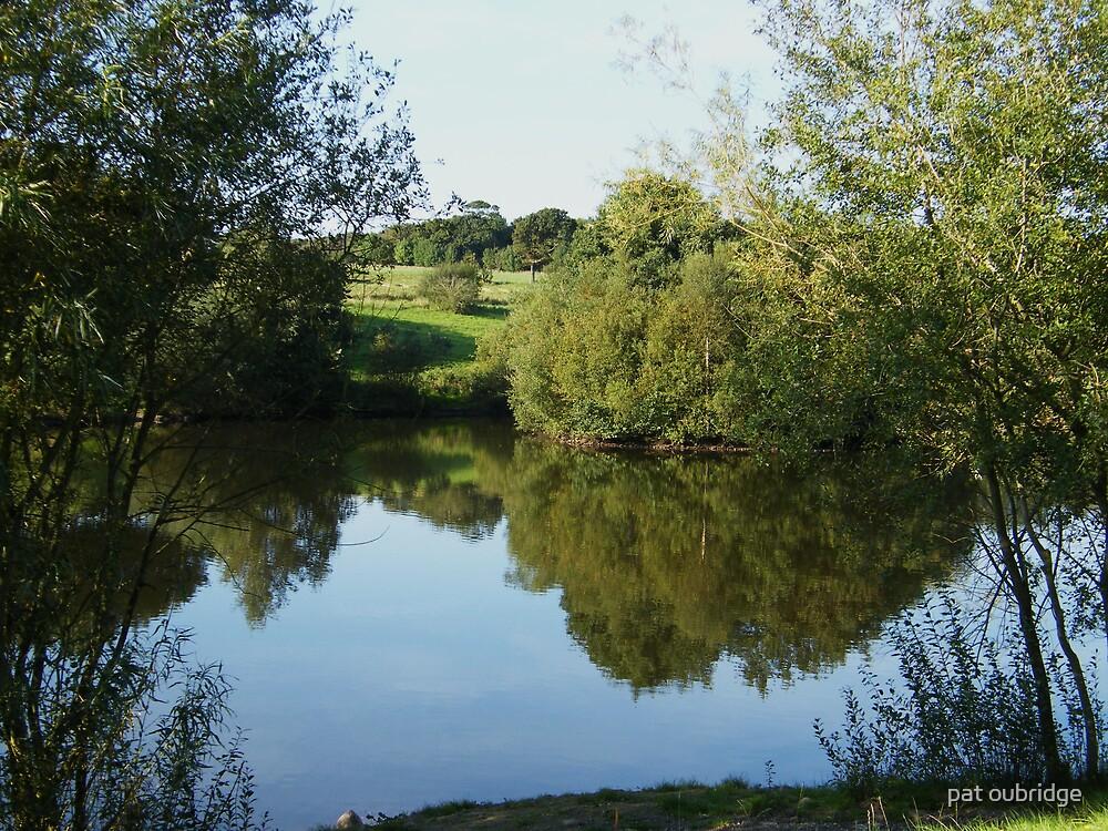 Still Waters  by pat oubridge