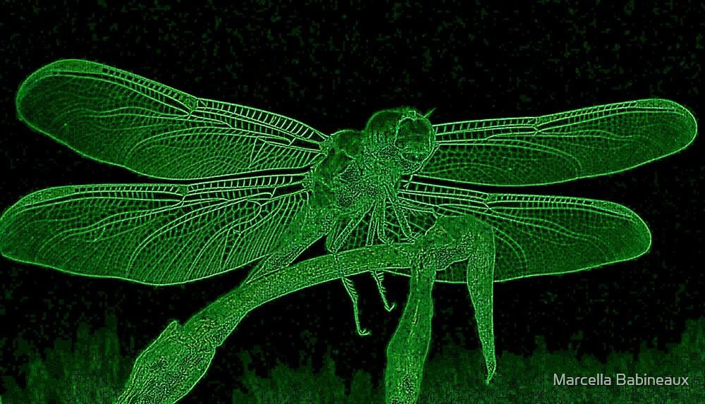 Dragonfly In Neon by Marcella Babineaux