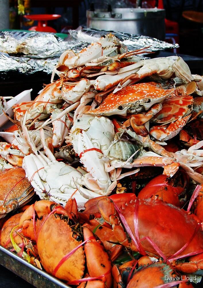 Crab by Dave Lloyd