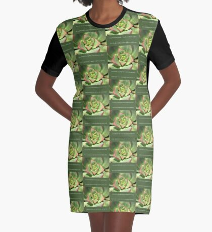 Hens And Chicks Succulent Graphic T-Shirt Dress