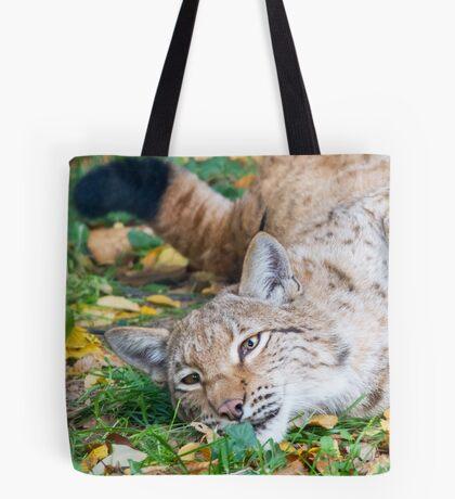 Playful Lynx Tote Bag