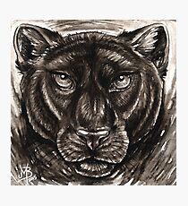 Panthera Photographic Print