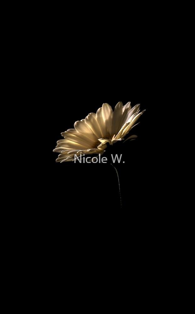 Gerbera by Nicole W.