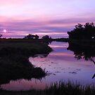 SMOKIN SUNSET by Rocksygal52