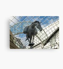 Horse in the sky. Canvas Print